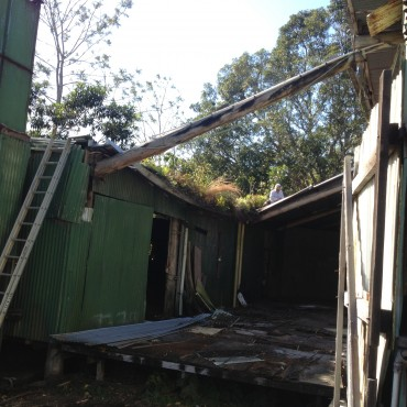 This is the side of the barn with the old upholstery shed-falling in on itself!