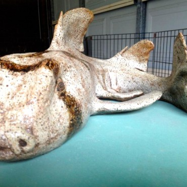 Port Jackson Shark Sculpture by Lyndall Bensley