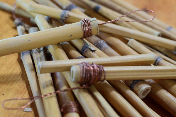 bamboo for brushes